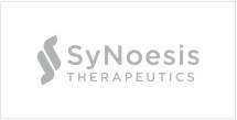 SyNoesis logo